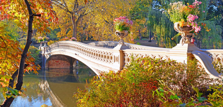 Central-Park-New-York-USA-Natur-14-1170x500px